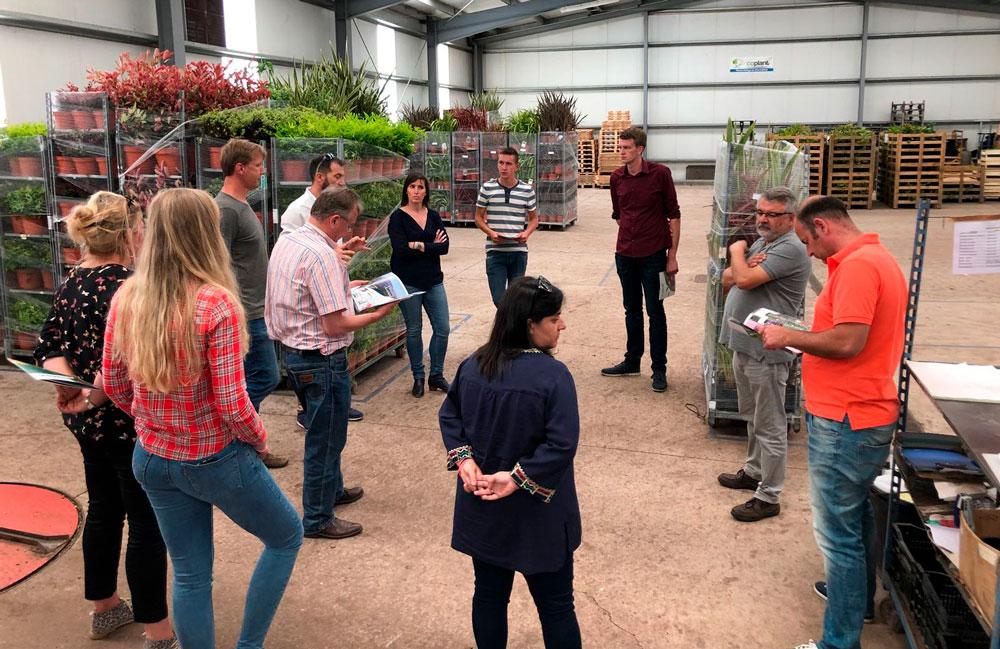 Coplant Galicia recibe la visita de los principales productores europeos de 'Magical Hydrangea'