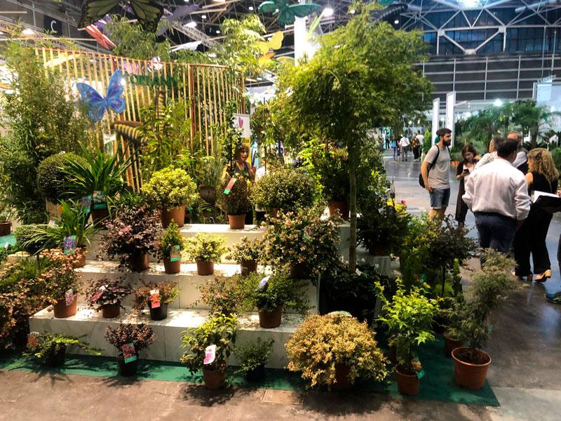 Coplant reafirma su presencia nacional e internacional en Iberflora 2018