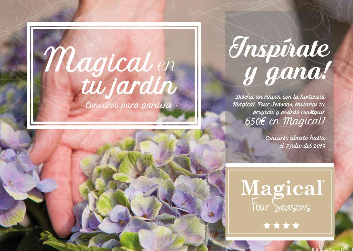 Segunda edición del concurso Magical en tu jardín