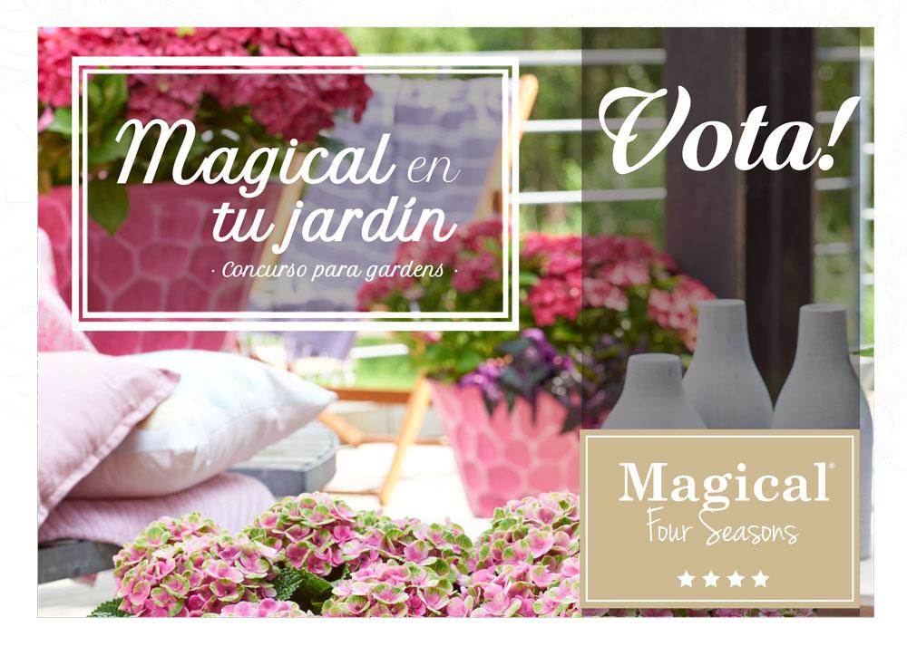 Vota tu rincón Magical favorito!