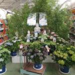 maracena-garden